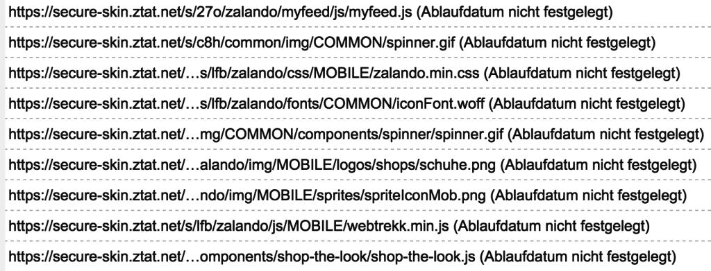 Statische Ressourcen wie das Logo oder CSS-Dateien werden bei Zalando nicht gecached